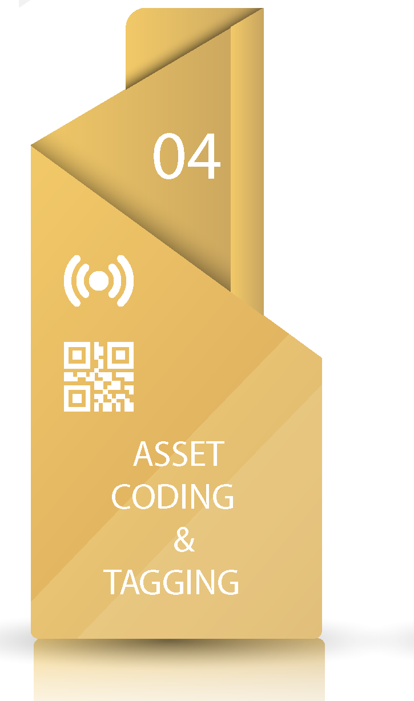asset-01